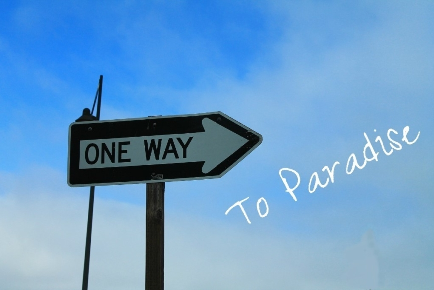 One Way To Paradise